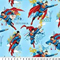 Superman Allover Fleece Throw Blanket with Finished Edges by Warner Bros.