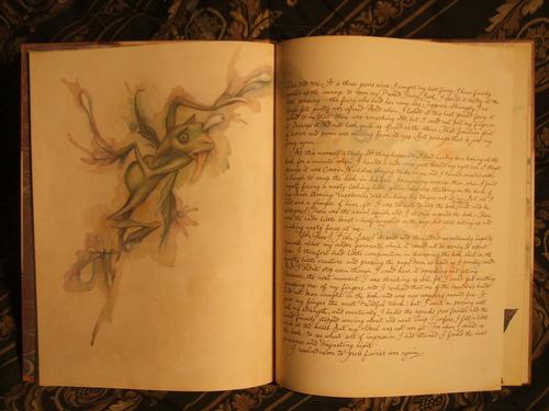 [Manual del Explorador Colonial] Fauna y flora: Las hadas comunes, defensa y caza 61qEusk0EaL