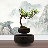 Thinker9999 Japanese style Levitating Air Bonsai Pot - Magnetic Levitation Suspension flower (Gray) (Color: Gray)