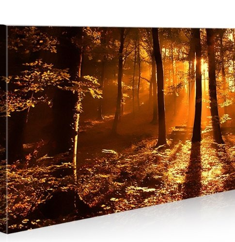 Wald 100x65 quadri moderni intelaiati pronti da for Quadri salotto
