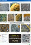 Guide to Common Urban Lichens: On Sto...