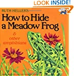 How to Hide a Meadow Frog and Other A...