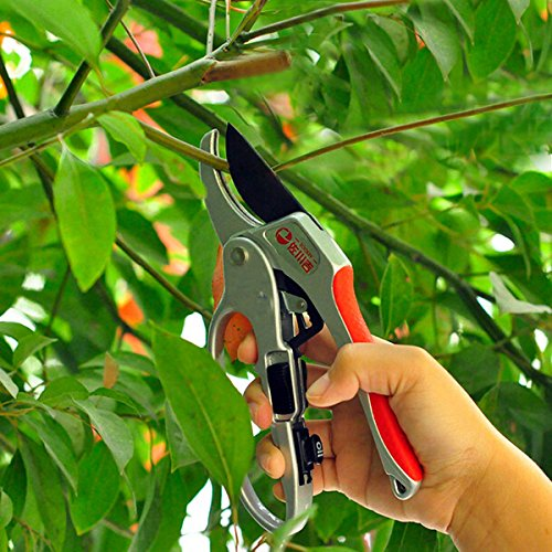 bluelover-30mm-gardening-sectional-pruning-shears-scissors-branch-cut-trimmer