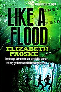 Like A Flood by Elizabeth Proske ebook deal