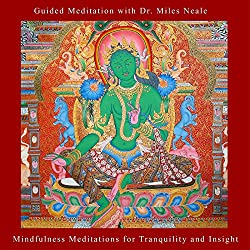 Mindfulness Meditations for Tranquility and Insight