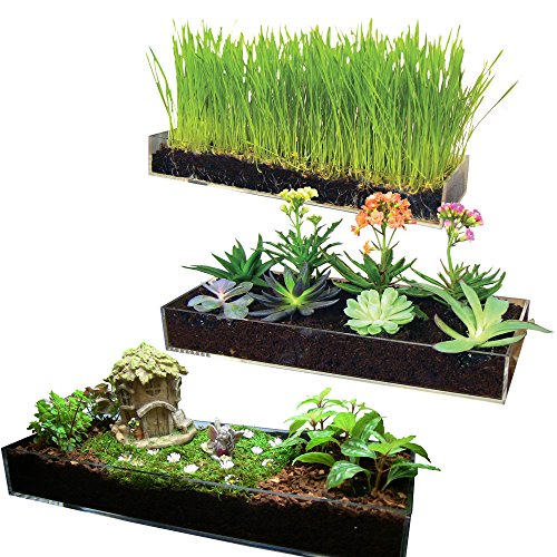 new-multi-use-planter-tray-fiber-soil-sprayer-gorgeous-succulent-dish-and-herb-gardens-grow-microgre