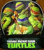 Teenage Mutant Ninja Turtles Dual Compartment Lunch Box / Tote