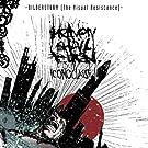 Bildersturm - Iconoclast II (The Visual Resistance) [Explicit]