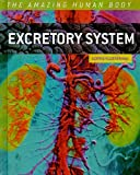 img - for Excretory System (The Amazing Human Body) book / textbook / text book