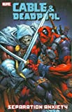 Cable & Deadpool - Volume 7: Separation Anxiety (v. 7) (078512523X) by Nicieza, Fabian