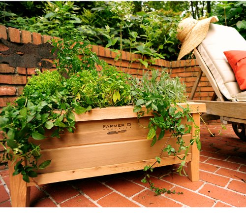 Cedar Urban Planter