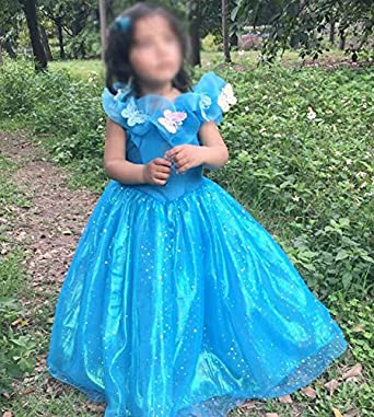 Iot Ltd Girls Cinderella Dress Blue Butterflies Princess Costume Cosplay