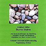 Bunte Steine | Adalbert Stifter
