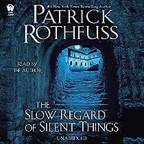 The Slow Regard Of Silent Things Audiobook