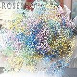 MIXカラーのかすみ草の花束 誕生日や記念日の特別な贈り物に