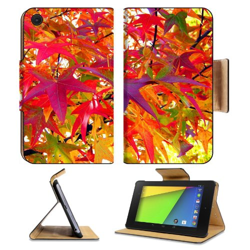 Multi Colored Autumn Leaves Fall Asus Google Nexus 7 FHD II 2nd Generation Flip Case Stand Magnetic Cover Open Ports Customized Made to Order Support Ready Premium Deluxe Pu Leather 8 1/4 Inch (210mm) X 5 1/2 Inch (120mm) X 11/16 Inch (17mm) msd Nexus
