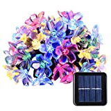 Qedertek Fairy Blossom Flower Solar String Lights, 21ft 50 LED Christmas Lights for Indoor and Outdoor, Home, Lawn, Garden, Wedding, Patio, Party, and Holiday Decorations (Multi-Color)