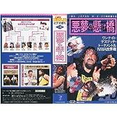 悪夢の懸け橋 IWA JAPAN '95.8.20 川崎球場大会 [VHS]