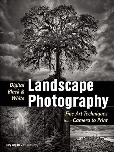 Digital Black & White Landscape Photography: Fine Art Techniques from Camera to Print PDF