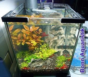 Hot Hot Hot Sale Aquael Aquarien Shrimp Set 20 Liter Check Price Mulagrhdya