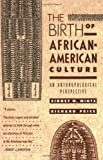 img - for The Birth of African-American Culture: An Anthropological Perspective book / textbook / text book