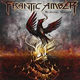 Burning Insight by Frantic Amber (2015-04-28)