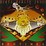 Sentinel & The Fools of the Finest Degree by Nigel Mazlyn Jones