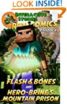 Minecraft: Flash and Bones and Hero-b...