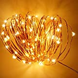 EMISH 15M Outdoor String Lights, Dimmable LED String Lights, Warm White LED Decor String Lights Flexible Copper Wire Light Decorative Lights + IR remote + Power Adapter