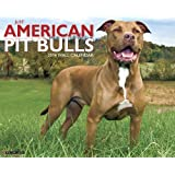 Just American Pit Bull Terriers 2014 Wall Calendar