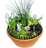 Echo Valley 6220 Gnome Garden Starter Accessory Kit