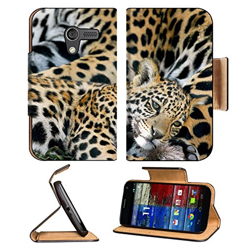 Animal Jaguar Baby Pattern Wildlife Sleeping Mother Spots Motorola Moto X Flip Case Stand Magnetic Cover Open Ports Customized Made To Order Support Ready Premium Deluxe Pu Leather 5 7/16 Inch (138Mm) X 3 1/16 Inch (78Mm) X 9/16 Inch (14Mm) Luxlady Mobili front-296896