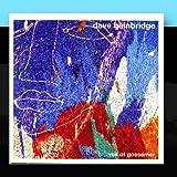 The Veil Of Gossamer by Dave Bainbridge (2011-01-31?