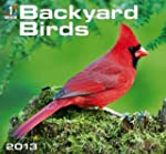 Backyard Birds 2013 Calendar