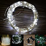 INST 33Ft Silver Wire LED Starry lights - Power adapter Included - with 100 Micro LED bulbs(White)