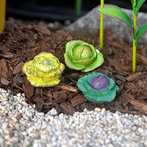 Studio M - Gypsy Fairy Garden -Mini Cabbage S/3 asst. GG228