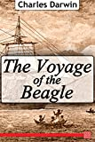 Image of The Voyage of the Beagle