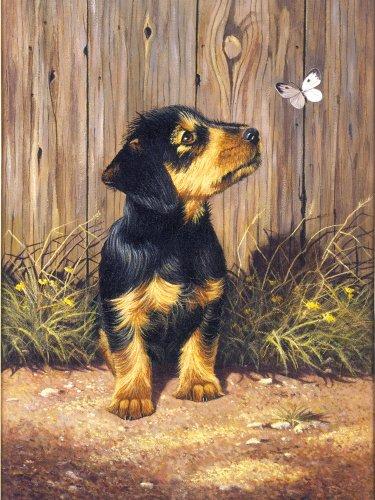 Royal & Langnickel Dachshund Puppy