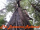 img - for The Lonesome Redwood book / textbook / text book