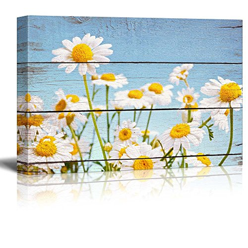 wall26-daisy-field-in-bright-sun-rustic-floral-arrangements-pastels-colorful-beautiful-wood-grain-an