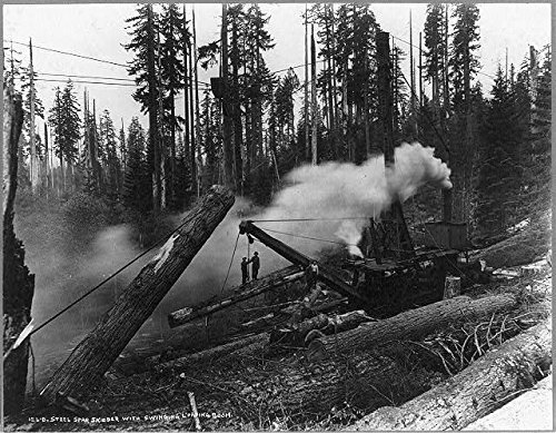 Photo: Steel spar skidder,loading broom,Steam Crane,Cascade Mountains,Washington,c1918 (Crane Pictures compare prices)
