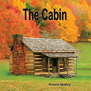 The Cabin Audiobook