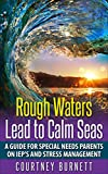 Rough Waters Lead to Calm Seas: A Guide For Special Needs Parents on IEP'S and Stress Management