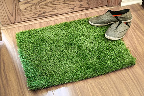 Artificial Grass Doormat (24X18 Inches) - Welcome Mat For Entrance Way - Outdoors and Indoors (Red Sox Trash Can compare prices)