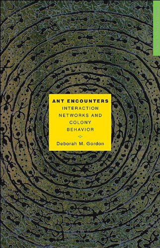 Deborah M. Gordon - Ant Encounters