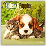 Kittens & Puppies 2016 Square 12x12 W...