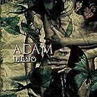 ��ADAM��(TYPE-C)(����ȯ�䡡ͽ���)