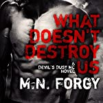 What Doesn't Destroy Us: Devil's Dust Series, Book 1 | M. N. Forgy