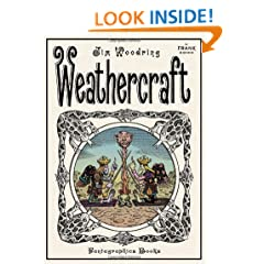 Weathercraft: A Frank Comic