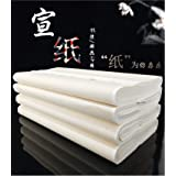Megrez Chinese Watercolor Practice Chinese Japanese Calligraphy Writing Sumi Drawing Xuan Rice Paper Thickening without Grids 100 Sheets/Set - 34 x 68 cm (13.38 x 27.77 inch), Half Sheng Shu Xuan (Color: Half Sheng Shu Xuan, Tamaño: 34 x 68 cm (13.38 x 27.77 Inch))